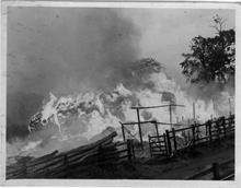 Fire at Farman's stack yard of reeds in Park Lane, North Walsham near the Aylsham Road junction.(see scouts in 1927).