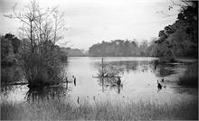 Perch Lake, Westwick photographed by Les Edwards