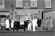 Prize Bull outside Sexton Butchers in North Walsham Market Place