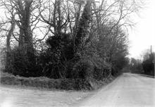 Yarmouth Road around 1900.
