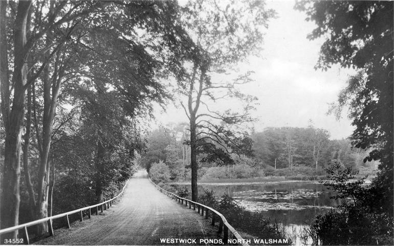 Photograph. Captain's Pond (Westwick Ponds) North Walsham c1920 (North Walsham Archive).