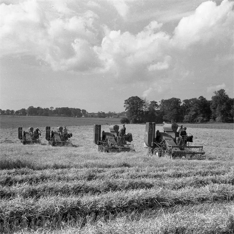 Photograph. Combines at Paston in 1954 (North Walsham Archive).